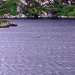 Upper Lough Caragh