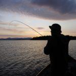 Spent gnat fishing